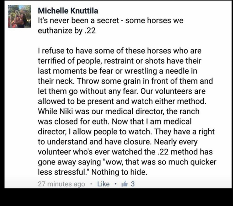michelle-admit-shooting-horses